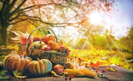 Im Herbst ist Frühjahrsputz für den Detailhandel