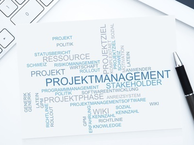 Bedürfnisgerechtes Projektmanagement