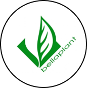 Kunden-Unternehmen: Bellaplant AG