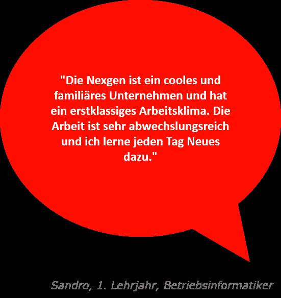 Spruch zur Nexgen von Sandro, 1. Lehrjahr Betriebsinformatik